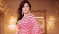 Zarine Khan Photoshoot in Saree